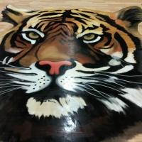 Anson Tiger (13)
