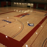 CSU Pueblo Massari Gym Mach I Bio Cushion