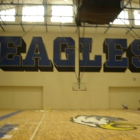 DECATUR EAGLES (7)